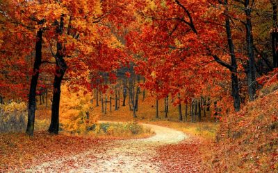 How to treat your skin in the fall